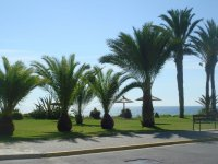 Cabo Roig-Sun all Day Ground Floor Apt with fantastic garden pic 10